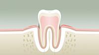 Parodontologie Paris 15